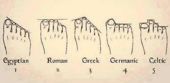 Foot Shape Ancestry: Everything You Need to Know ...