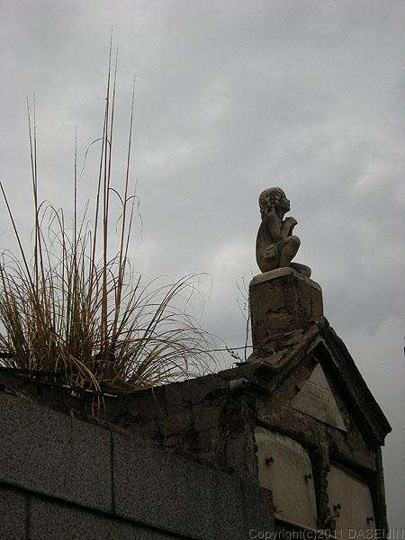110108ブエノスアイレス・レコレータ墓地草の生えた墓