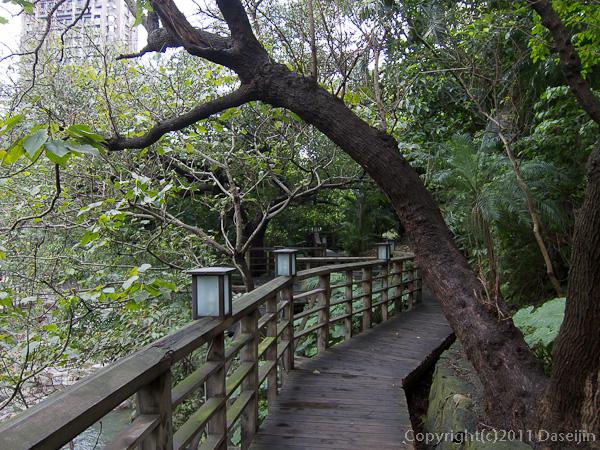 120313台北・新北投、温泉親水公園歩道