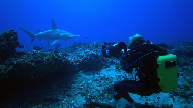 Adventure_Ocean_Quest_EP1_Getfactual_1920x1080