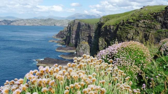 Scotland_gf2_BG_1920x1080
