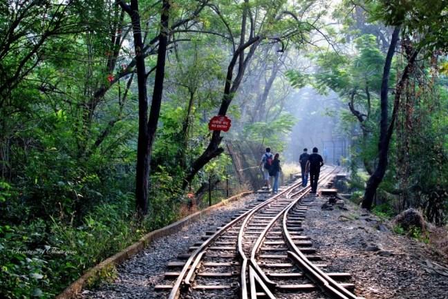 Borivali National Park, Cycling Tracks In Mumbai