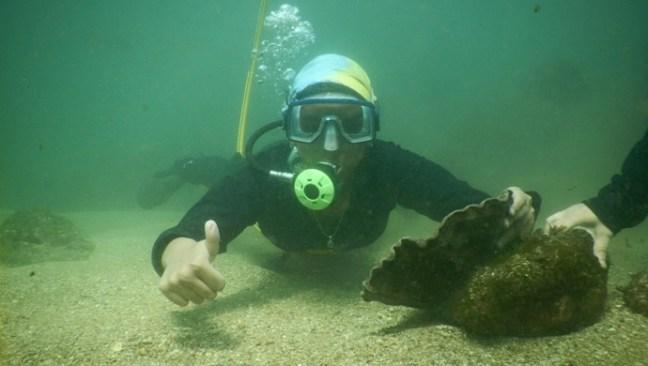 Snorkeling in Malvan: adventure places in mumbai