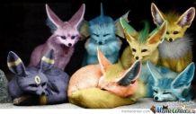 poke foxes