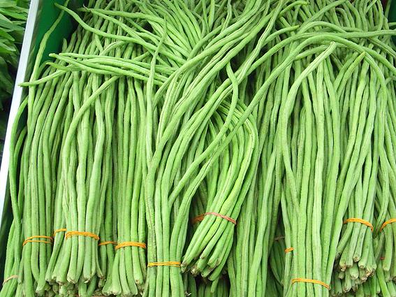 Fagiolini di sant 39 anna fagiolini serpente o fagiolini for Quando si piantano i fagioli