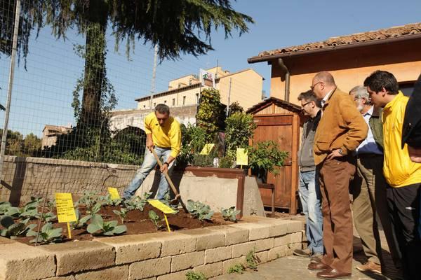 In Italia gli orti urbani triplicati in 3 anni