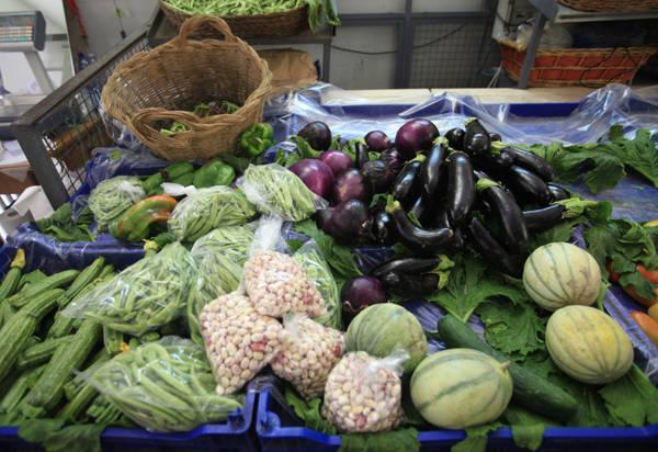 Cresce in Italia l'agricoltura bio, +13%