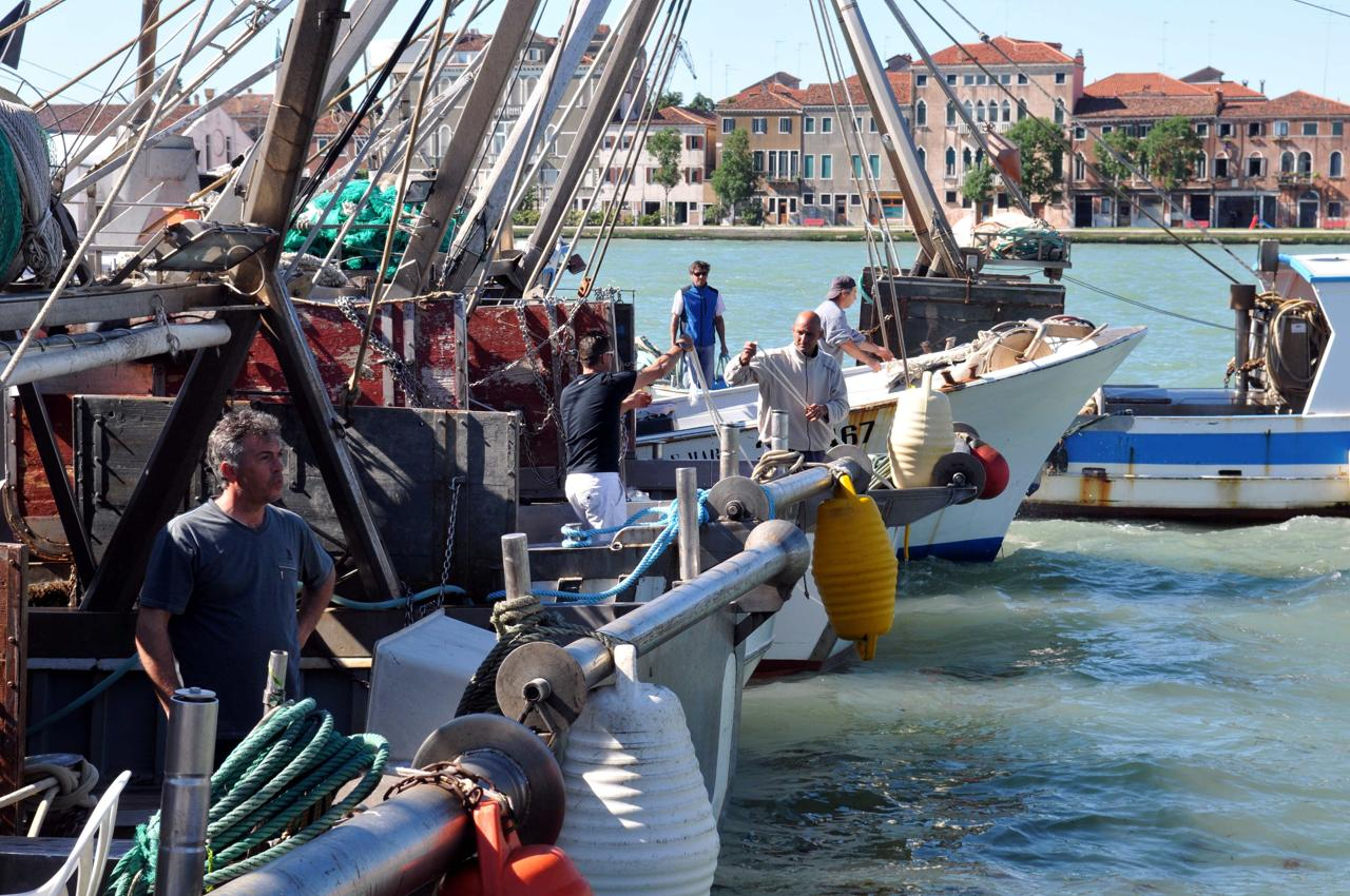 Scatta il fermo pesca nel mare Adriatico