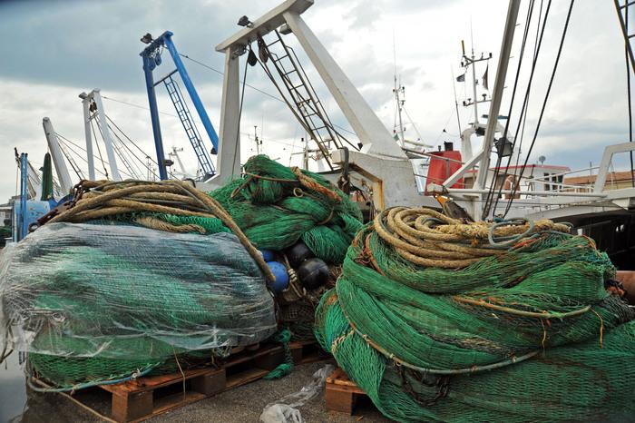 Fao, nuove regole di sostenibilità in menu mondiali di pesce