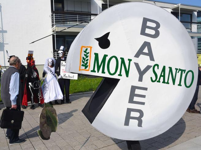 Bayer perde la seconda causa sul glifosato