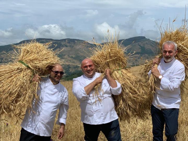 Lillo Freni, Francesco Arena e Pasquale Caliri nel campo di grano a Galati Mamertino