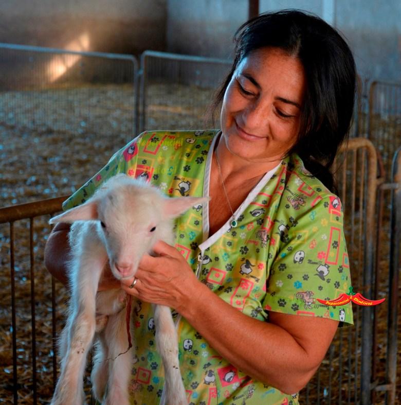 Intervista ad Angela Saba con un agnellino appena nato