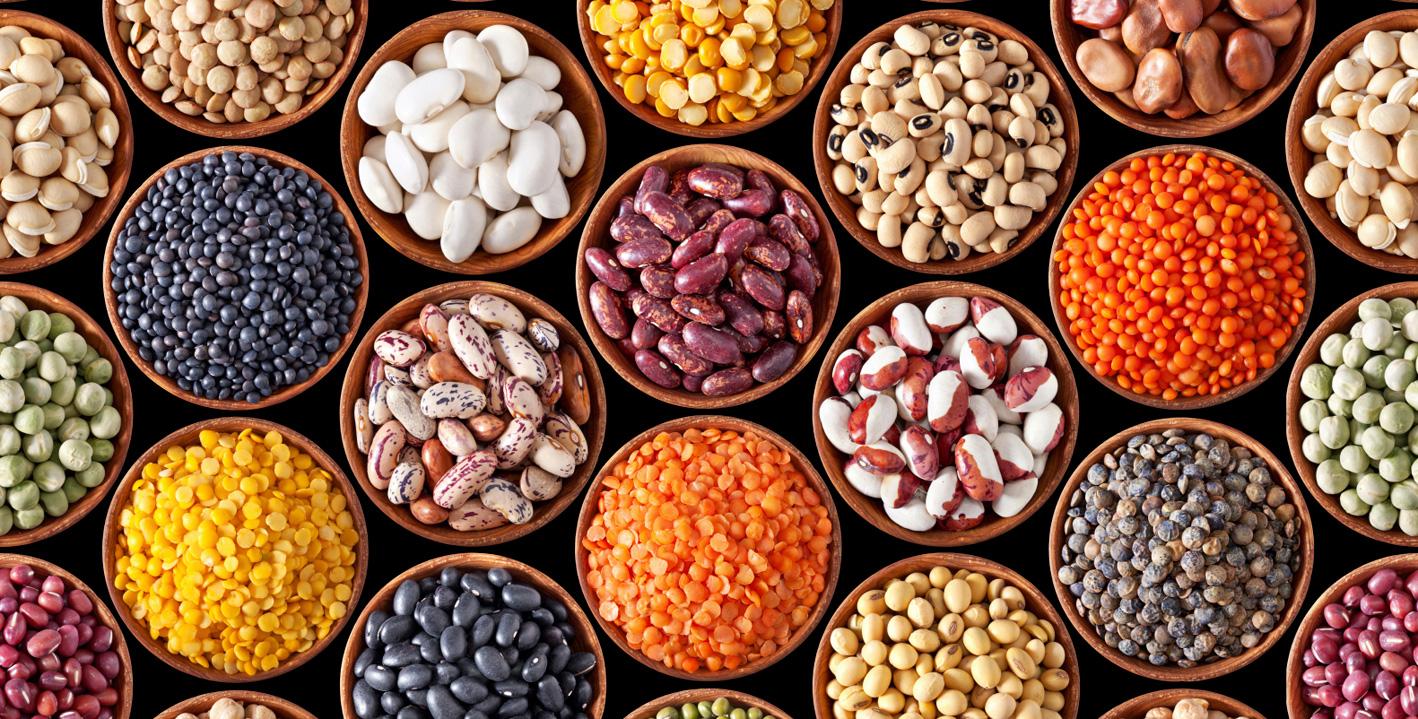 Presidi Slow Food, giro dei legumi