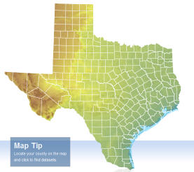 TNRIS - a wealth of Texas GIs data