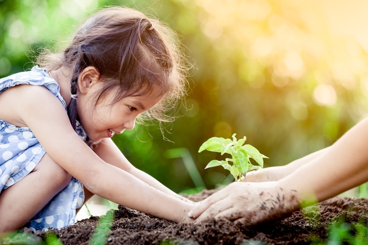 How nonprofits should use the World Environment Day for its fundraising efforts