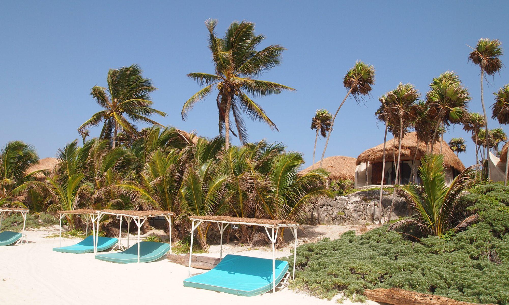 Papaya Playa Project Glamping Com