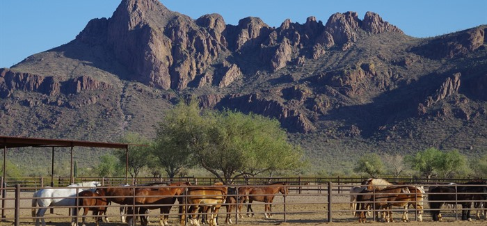 Huffington Posts names 7 must see Dude Ranches