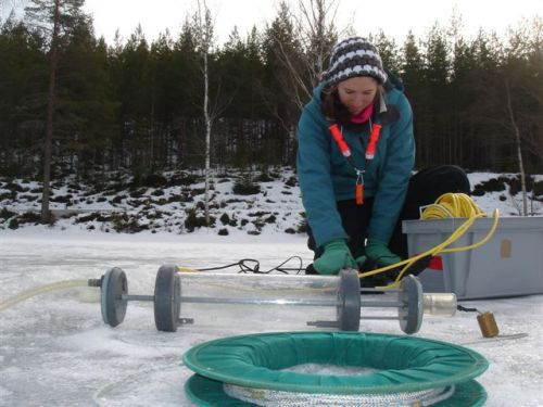 Photo: Blaize Denfeld under ice lake research. Source: Blaize Denfield.