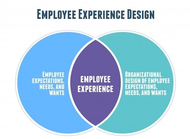 employee experience mentalità