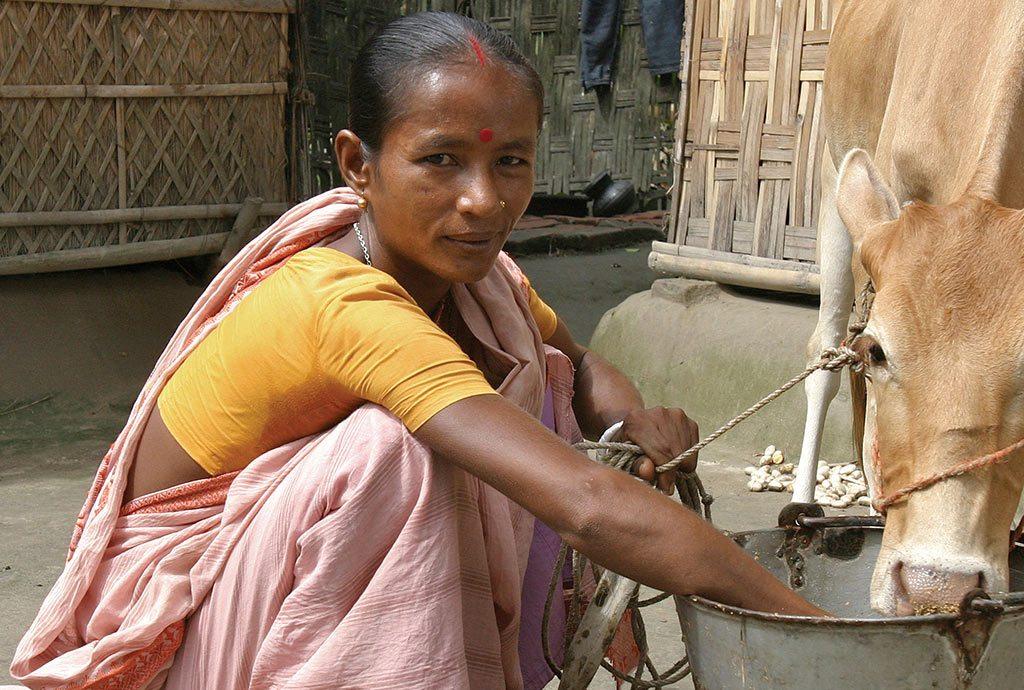 Mikrofinanz