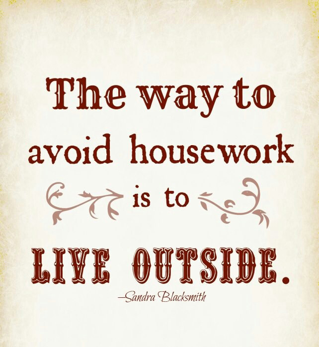 Housework? What's That?!