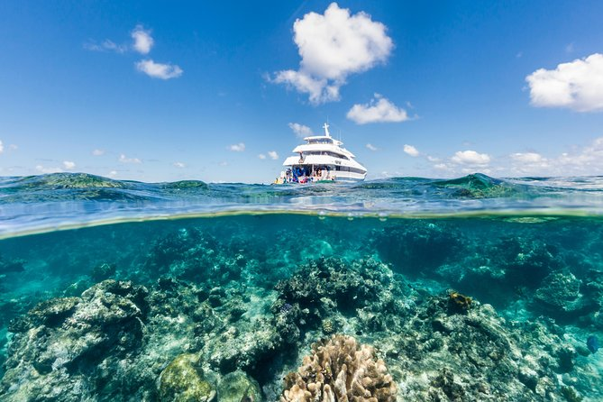 People diving and snorkeling from a yacht on a Great Barrier Reef tour from Cairns, Australia