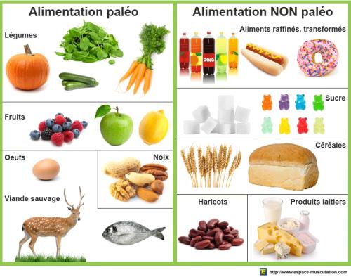 alimentation regime paleo