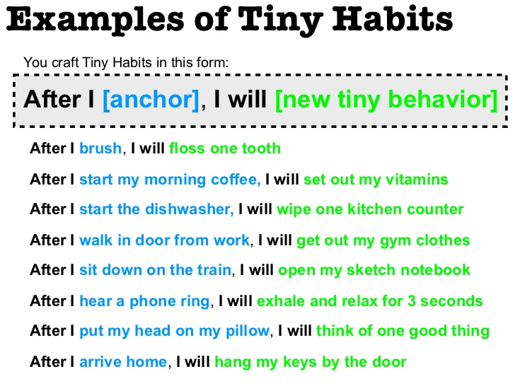 exemple de tiny habits