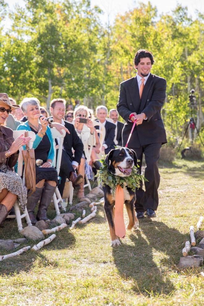 Dezelan Wedding (web)-280