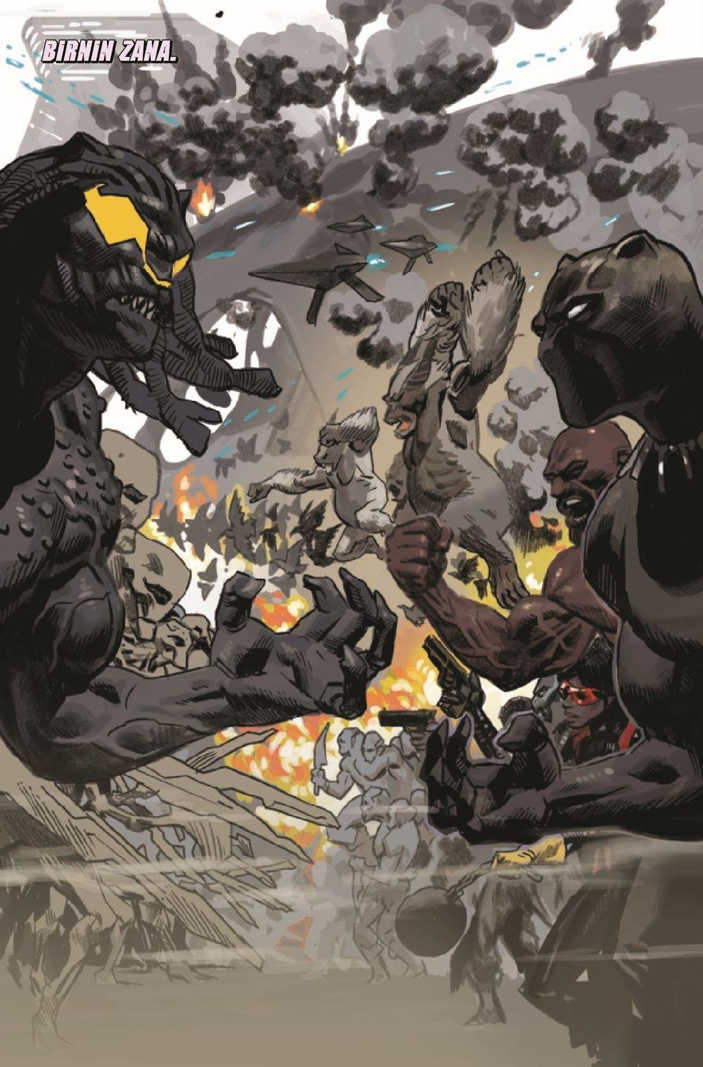 BLAP2018025_Preview-3 ComicList Previews: BLACK PANTHER #25