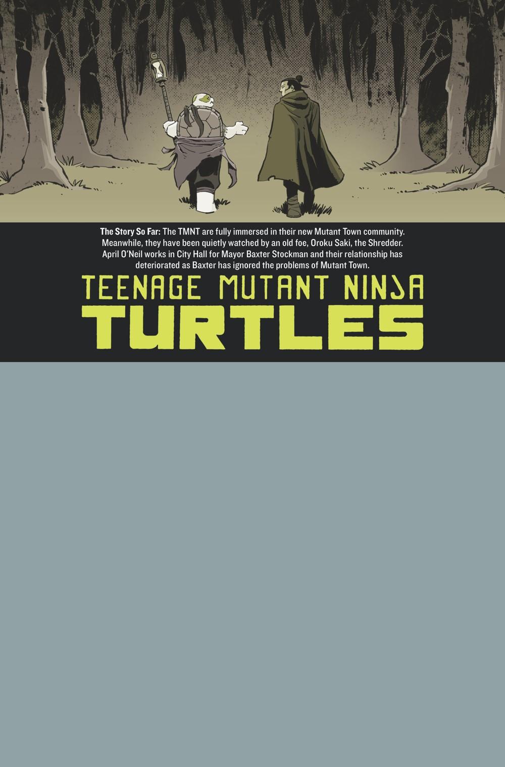 TMNT118_ifc ComicList Previews: TEENAGE MUTANT NINJA TURTLES #118