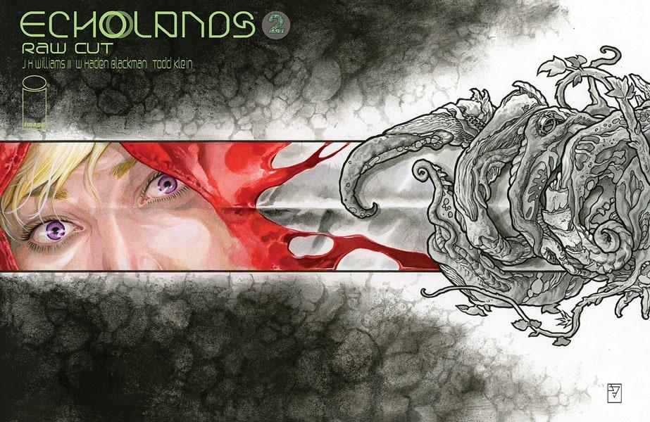 echolands02a_rawcut Image Comics October 2021 Solicitations