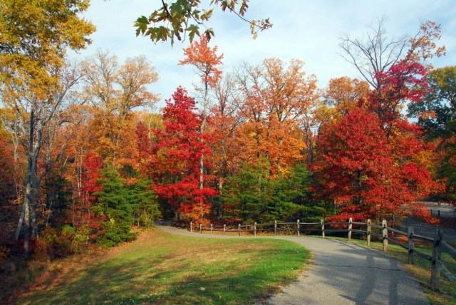 9 Reasons to Discover Baltimore's Natural Side This Fall