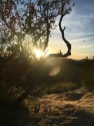 Runyon Canyon Park_ruck_27