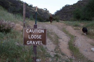 Runyon Canyon Park_ruck_31
