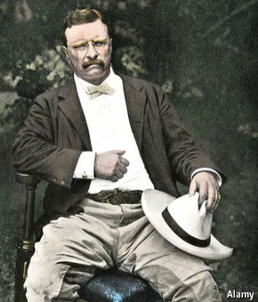 Teddy Roosevelt Panama Hat