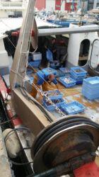 Skrzynie na łodzi rybackiej - ryby i owoce morza - Port Walencja
