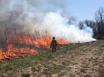 Kroger Hills controlled burn