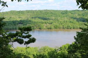 A canopy of green trees gives way to a view of the Ohio River on the Little Turtle Trail at Shawnee Lookout.
