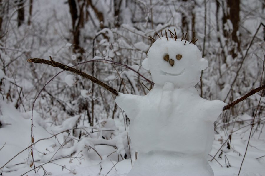 A snowperson has sticks for hair and tree branches as arms. There is a tie made out of snow as well.
