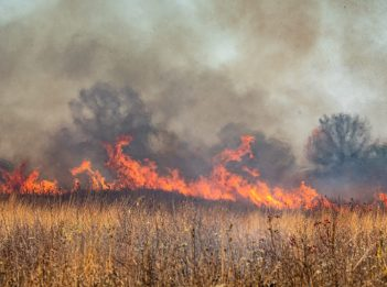 A controlled fire occurs on a prairie habitat at Miami Whitewater Forest.