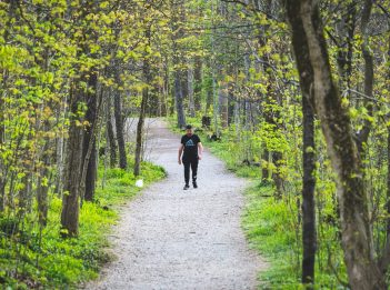 An individual walks along the Gorge Trail at Sharon Woods in spring.