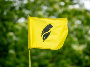 A yellow golf flag has the silhouette of a bird on it.