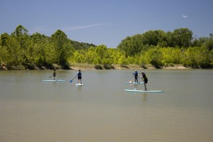 A group of people stand-up paddleboard at Campbell Lakes Preserve.