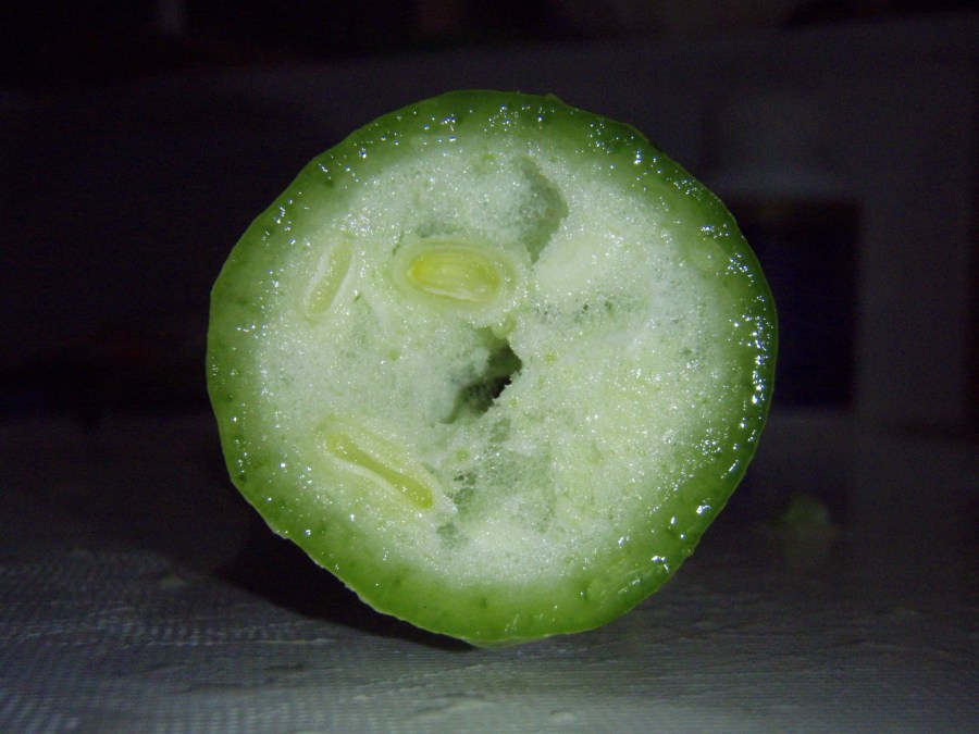 A cross section of the snake bean plant shows the green interior,