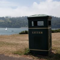 How is litter in the UK impacting our environment?