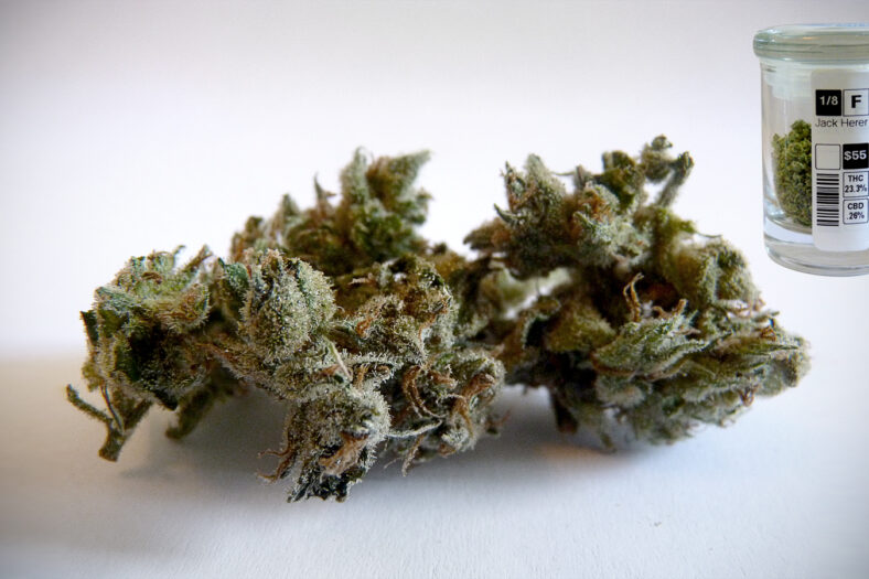 Blog - These Are The Most Popular Cannabis Strains in California Right Now | greenrush