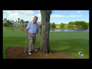 Martin Hall Golf Video - The Long Game