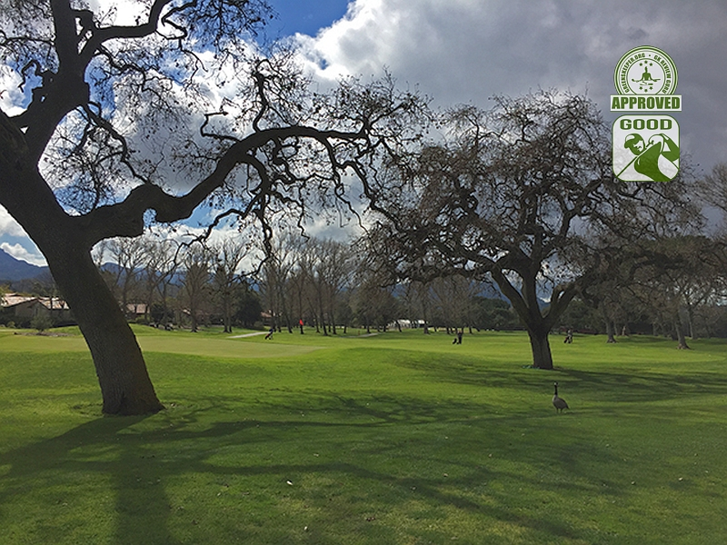 Westlake Golf Course Westlake California Hole 1 Green-side GK Review Guru Visit