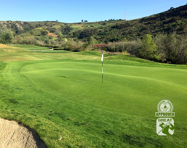 Crossings at Carlsbad Carlsbad California GK Review Guru Visit - Hole 14